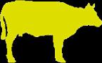 Vlees en vleeswaren
