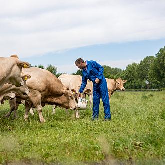 Coöperatie veehouders
